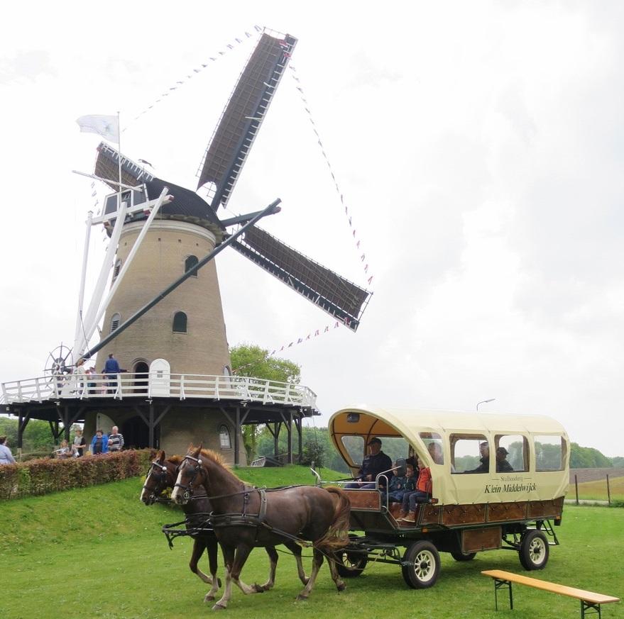 Paard-en-wagen-1[1]